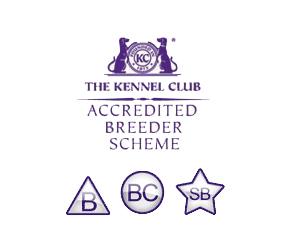 Breeder scheme