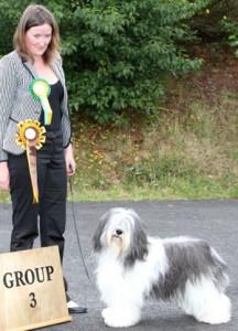 Dream_pastoral group 3 Paignton 2011