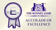 kennel-club-excellence-award